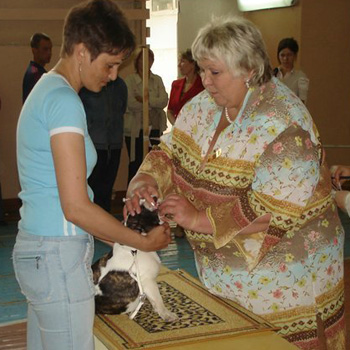http://www.konura.info/ekspert/sokolova.jpg
